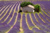 Provence hotels